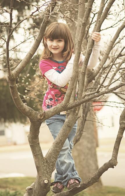 Little Girl in a Tree