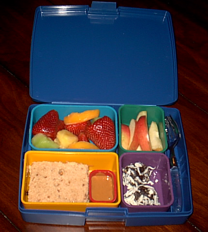 Payton's Laptop Lunchbox