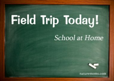 Field trip today