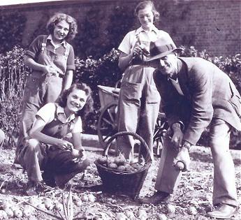 gardening in a freedom garden