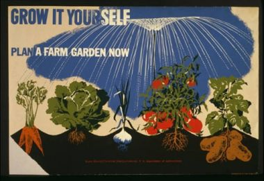 A victory garden poster