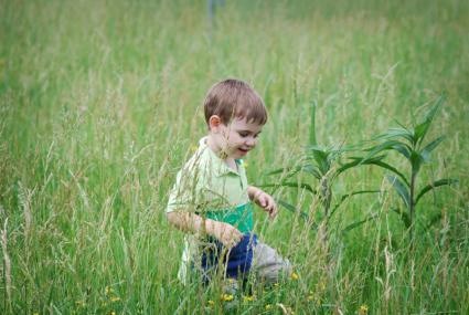 My little boy walking in a field