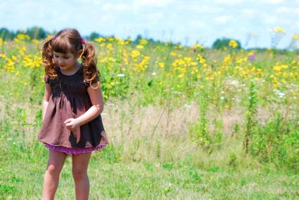 Walking in the Wildflowers