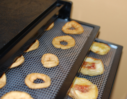 Peaches and Apples in Food Dehydrator