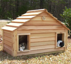 Eco Friendly Cat Condo Duplex